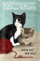 Cats_And_Kittens_51f679bf70bc9