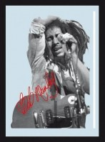 Bob_Marley_In_Co_545d1f7f68188