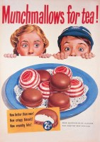 Munchmallows_For_530f3de040611